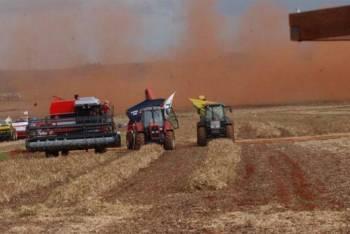 Governo estuda mudanças no Proagro; produtores devem migrar para seguro privado