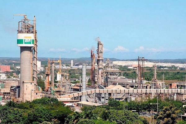 Fechamento de fábrica da Petrobras coloca em risco rebanho de MT
