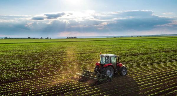 PIB do agronegócio subiu quase 17% nos primeiros dez meses de 2020
