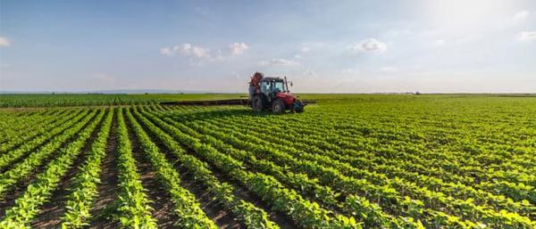 Senado aprova criação de fundos de investimento para o setor agropecuário