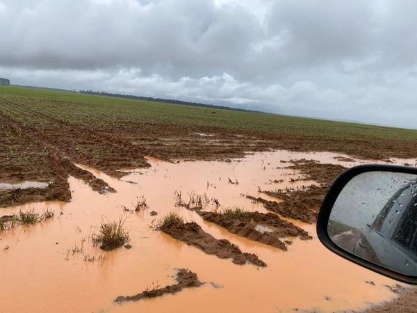 Chuvas alagam lavouras, atolam máquinas e prejudicam colheita da soja e plantio do milho em MT