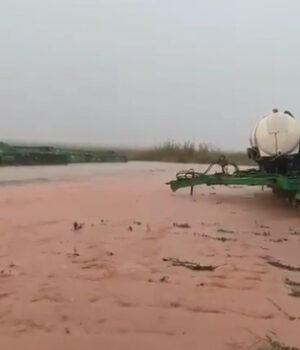 Safra já teria perdido 3,5 milhões de toneladas por causa das chuvas