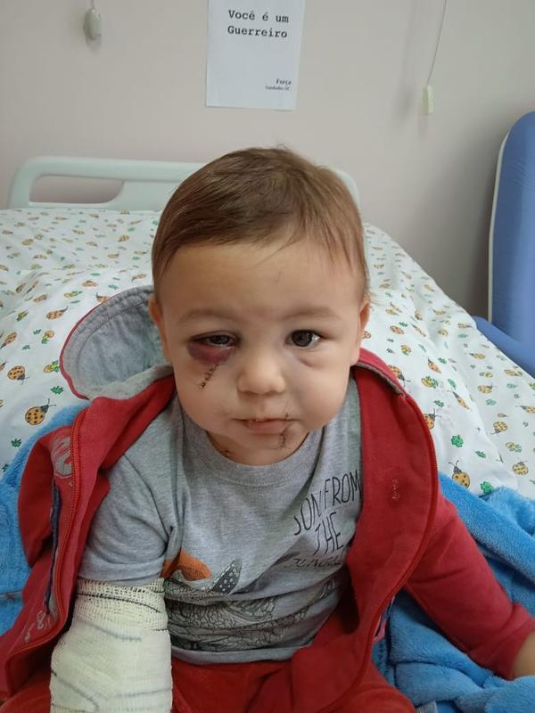 Hospitalizado e sem previsão de alta, bebê ferido em ataque a creche de SC tem cartaz de incentivo: 'Você é um guerreiro