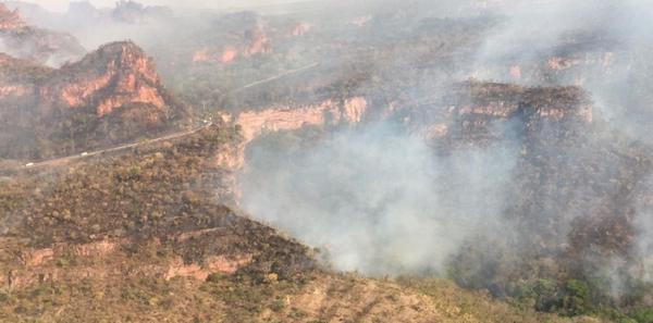 Cerrado mato-grossense é o que mais sofre com as queimadas deste ano