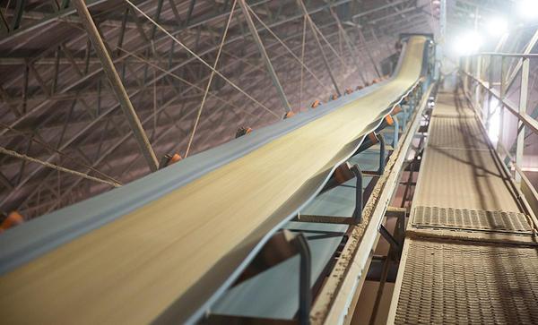 Cai 8,5% volume de soja esmagada nas indústrias em Mato Grosso