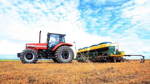 Sorriso: presidente recomenda calma para produtores não terem prejuízos com plantio antecipado de soja