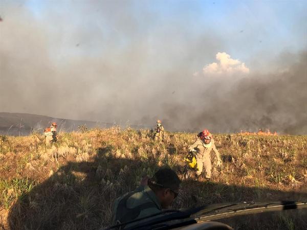 Órgãos do Estado ampliam integração no combate a incêndios florestais em Mato Grosso
