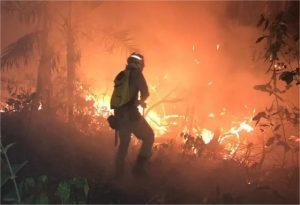 Peritos americanos chegam a MT para combater incêndios florestais